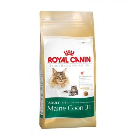 royalcaninmaincoon