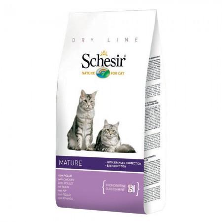schesir-cat-400-gr-mature[1]
